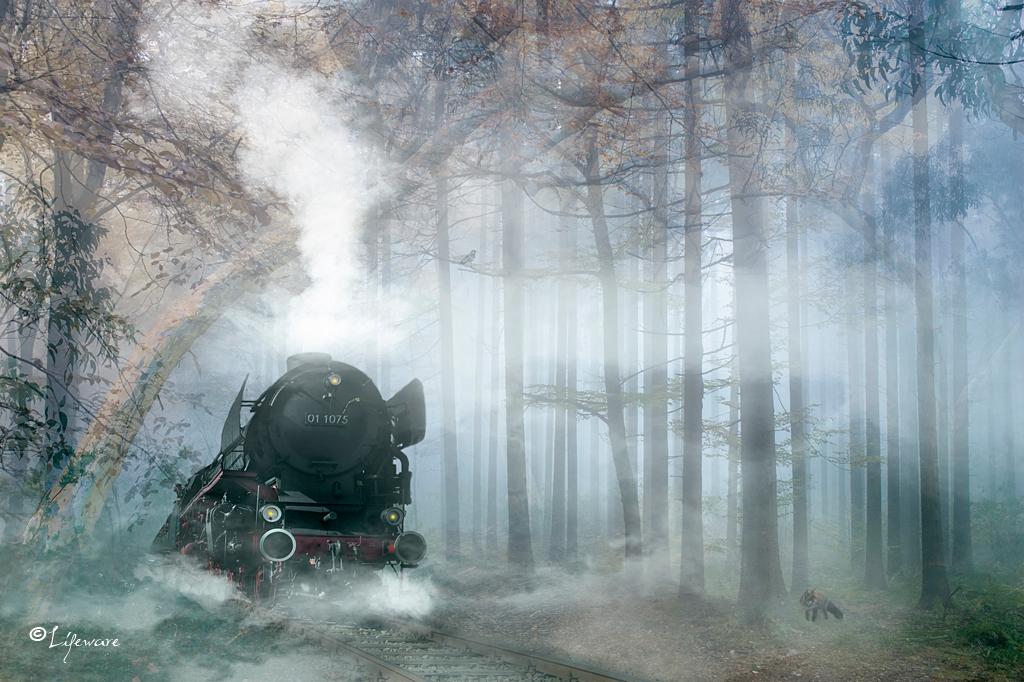 Tjoeke-tjoeke pufpuf - Bewerking uit meerdere eigen foto's. - foto door Lifeware op 01-02-2013 - deze foto bevat: trein, bos, stoom, stoomtrein, photoshop, fotobewerking, locomotief, fotomanipulatie, lifeware