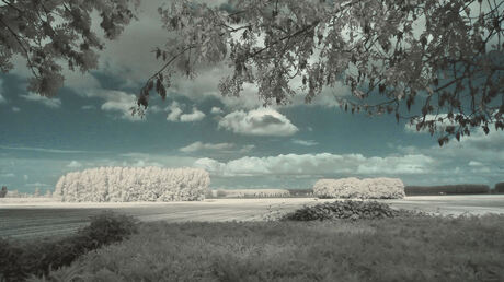 zeeuws infrarood