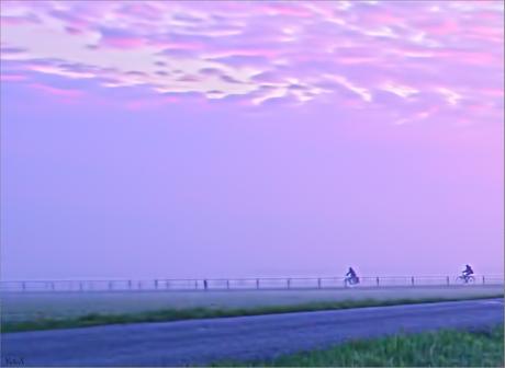 ochtendspits in de polder