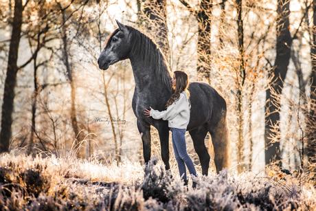 Model en haar paard in de rijp