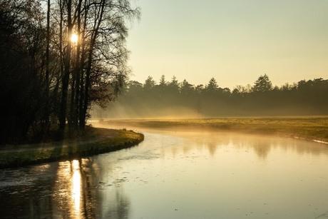 Koude dag op de Veluwe
