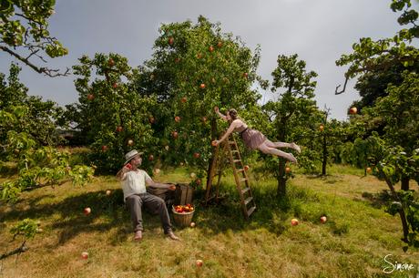 De appel plukkers