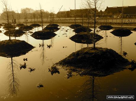 Westerpark, Amsterdam