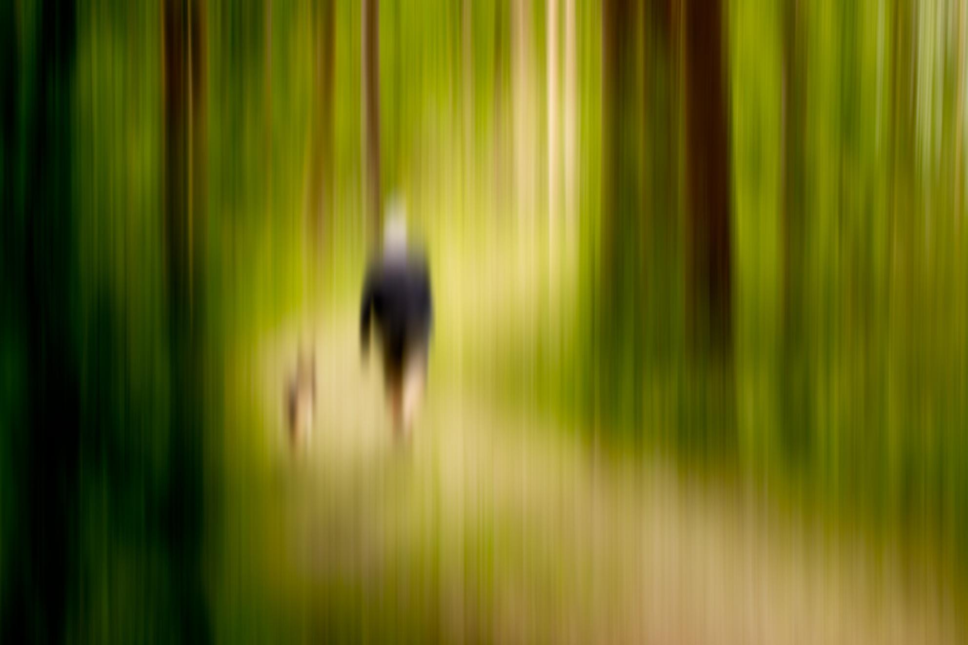 wandelen in het lentebos - lekker de eenzaamheid opzoeken en creatief bezig met fotografie - foto door fotostad op 28-04-2020 - deze foto bevat: abstract, natuur, licht, bewerkt, fantasie, landschap, hond, eenzaam, silhouet, schilderij, bewerking, sfeer, sepia, beweging, contrast, photoshop, creatief, textuur, sprookje, alleen, distance, wandelaar, afstand, bewerkingsopdracht, bewerkingsuitdaging, lange sluitertijd, double exposure