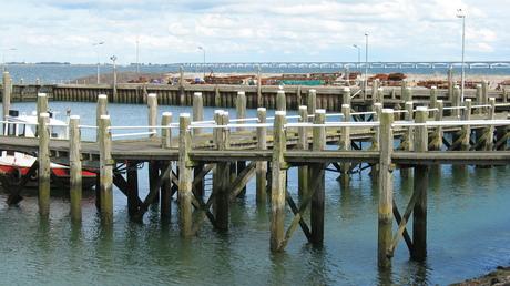 2012-09- aanlegsteigers haven Colijnsplaat met Zeelandbrug.jpg