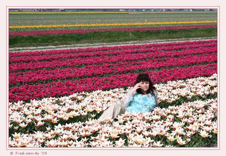 Bollenvelden bij Lisse III - Nu eens achter de camera. Manlief kan het ook.  Heerlijk liggen, genieten en de geur opsnuiven van de bloemen.       Bedankt voor de leuke r - foto door nicole-8 op 12-04-2009 - deze foto bevat: rood, tulpen, spring, lente, tulp, voorjaar, canon, bollenvelden, bloembollen, bloembol, nivas, eos450d