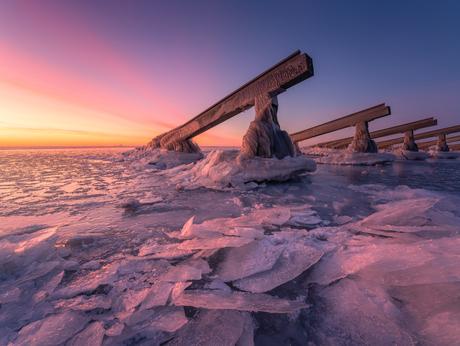 Arctic Feelings