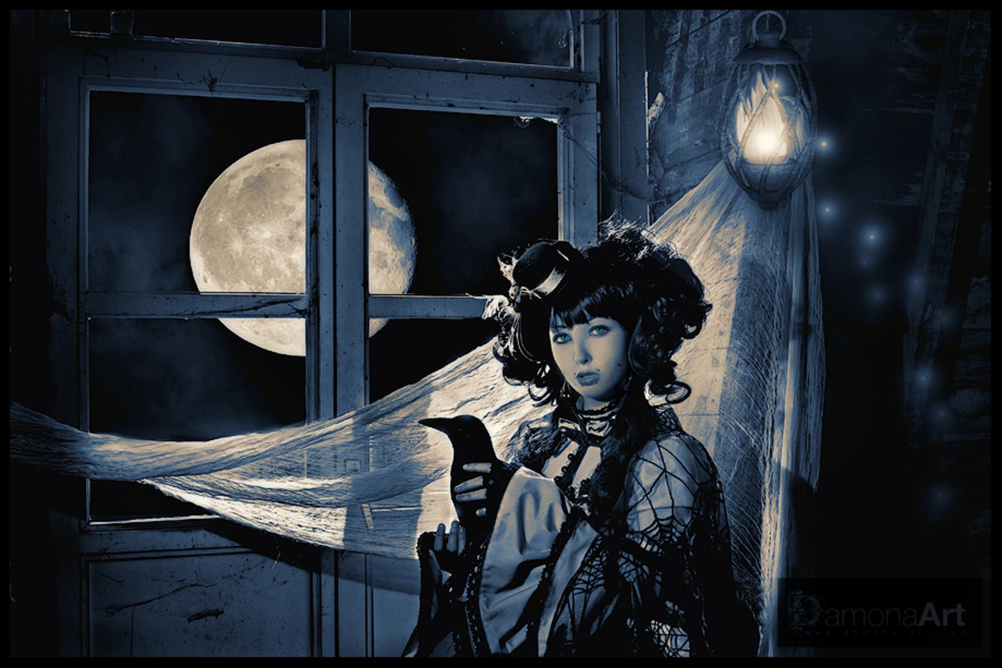"""New Moon - Zo, hier heb ik grotendeels van de dag aan zitten werken :D Ik heb van deze dagfoto een nachtfoto gemaakt in Photoshop met behulp van een tutorial v - foto door damona-art op 18-03-2010 - deze foto bevat: kasteel, model, nikon, nacht, people, moon, photoshop, raw, secret, fantasy, castle, raaf, tamron, manipulatie, tutorial, """"Du Loup"""", Schokpop, """"New moon"""" - Deze foto mag gebruikt worden in een Zoom.nl publicatie"""