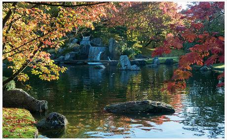 Herfst in de Japanse Tuin 1