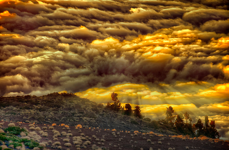 Orotava Valley above clouds