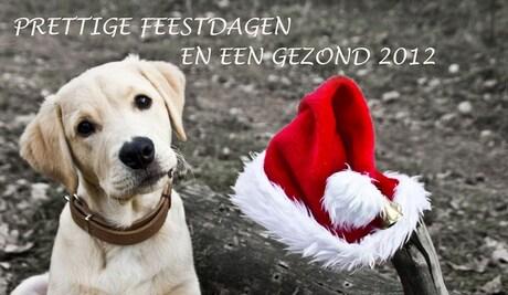 Kerstkaart 2011 met Raska