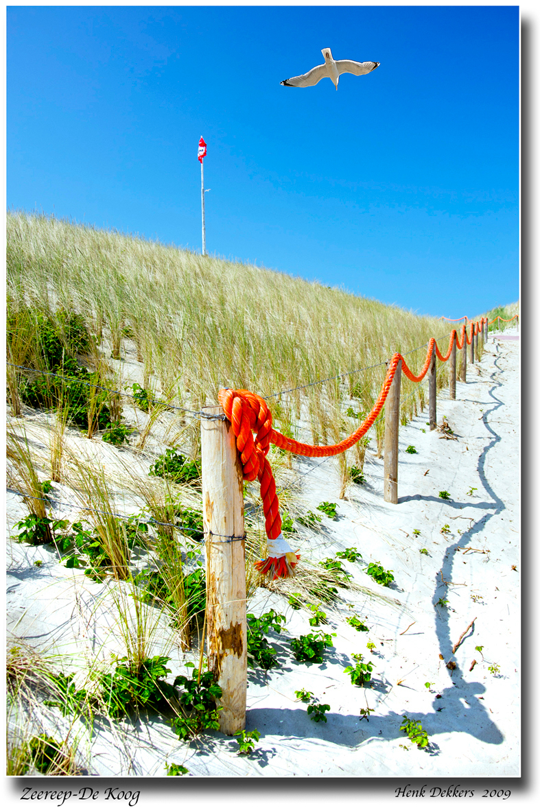 Zeereep-De Koog - In De Koog hebben ze een wandelpad op het duin weer in ere hersteld. Dit is de opgang ervan vanaf de duinen. De oranje kabel vind ik wel fotogeniek h - foto door henkdekkers op 17-07-2009 - deze foto bevat: duinen, texel, zeereep, de koog