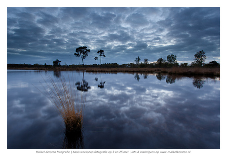 Reflections of nature | Hatertse vennen | Nijmegen