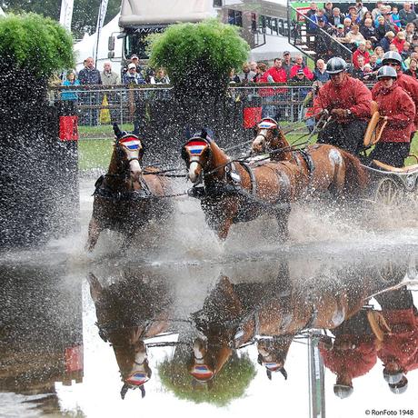 Paardenspektakel Beekbergen 30-07-2011 003 - kopiekopie.jpg