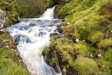 Wild Stream!