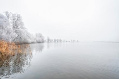Witte natuur
