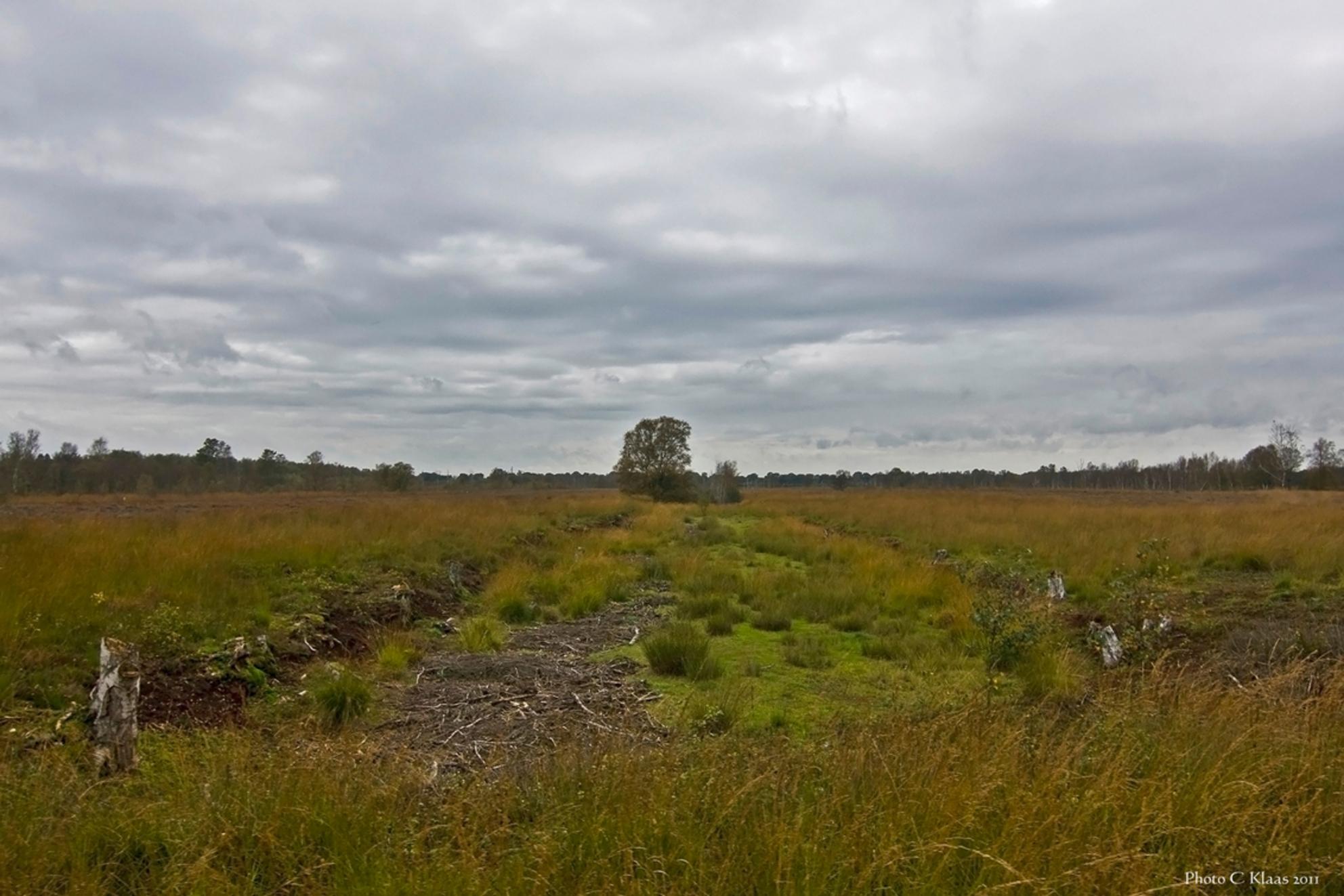 Veenlandschap - Hier wordt nog steeds turf gestoken. Dit is een veen landschap waar nog heel veel turf is te winnen. - foto door k.tien op 08-10-2011 - deze foto bevat: veenlandschap - Deze foto mag gebruikt worden in een Zoom.nl publicatie