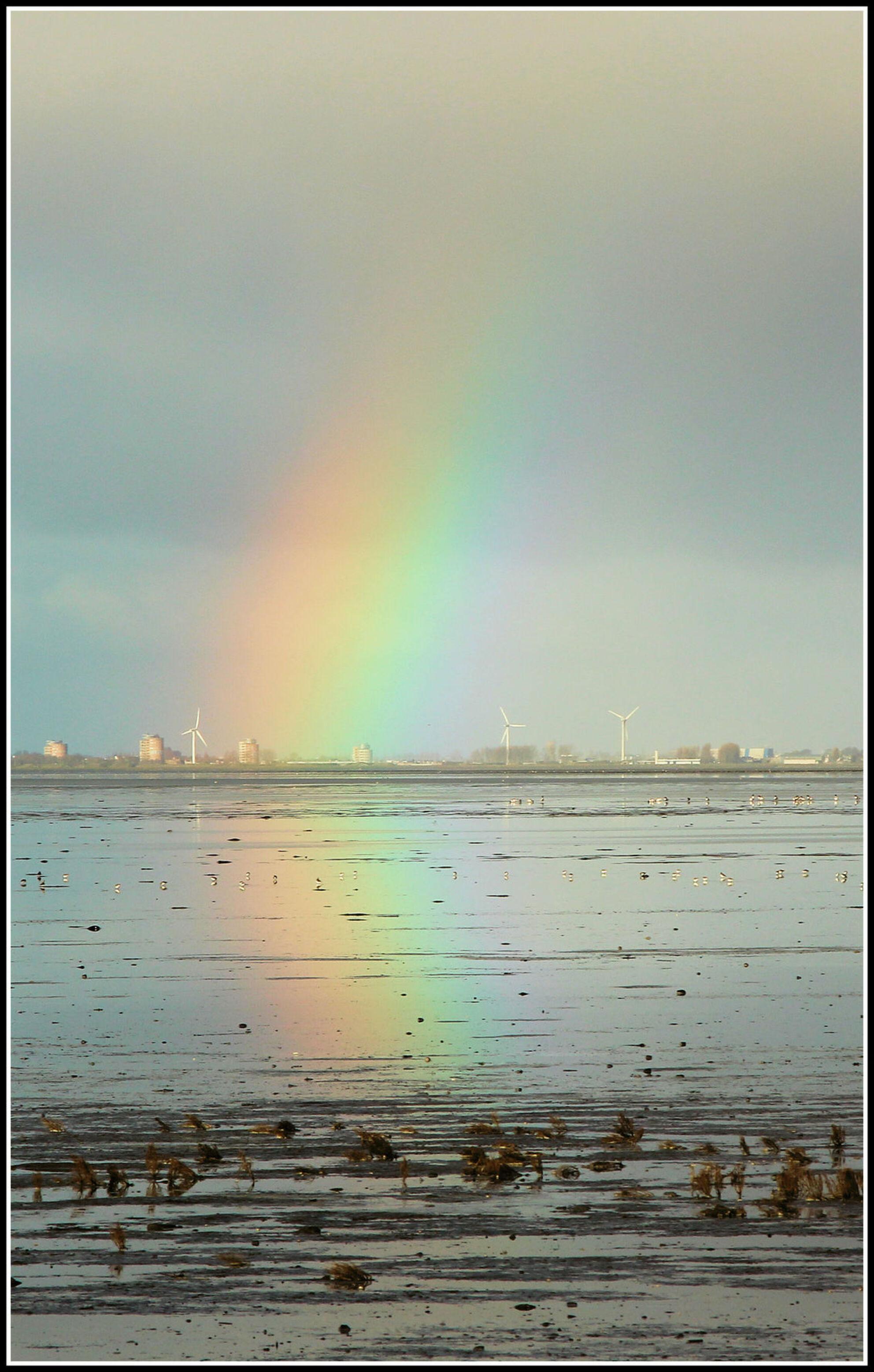 Balgzanddijk richting Den Helder - - - foto door jelle13 op 16-02-2021 - deze foto bevat: groen, lucht, zon, water, natuur, geel, licht, winter, landschap - Deze foto mag gebruikt worden in een Zoom.nl publicatie