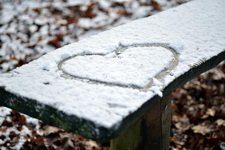 De eerste sneeuw.......