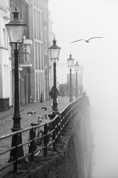 Mist aan de Maas