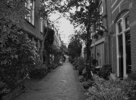 nostalgisch straatje in Haarlem