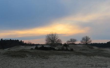 Zonsondergang Kootwijkererzand - - - foto door adagaag op 11-03-2015 - deze foto bevat: lucht, wolken, zon, natuur, licht, avond, zonsondergang, landschap, duinen, tegenlicht, bomen, zandverstuiving