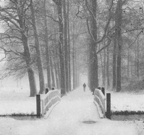 Op en top winter