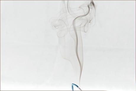 Rook 1