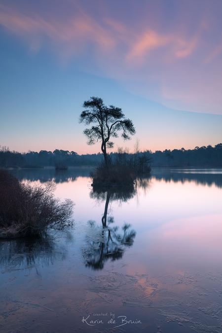 The Tree! - - - foto door KarindeBruin op 20-03-2021 - deze foto bevat: lucht, wolken, zon, water, natuur, licht, ijs, spiegeling, landschap, bos, tegenlicht, zonsopkomst, bomen, meer, lange sluitertijd