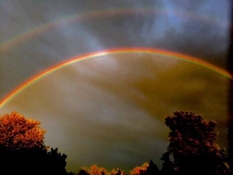 Dutch Rainbow