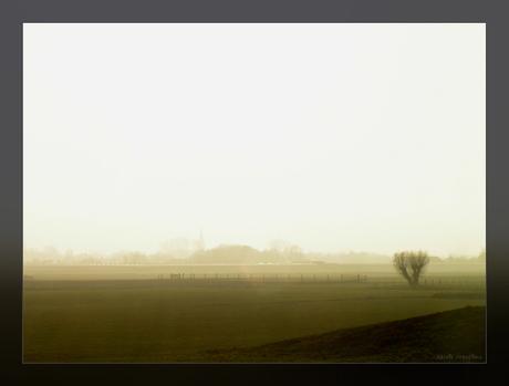 Maasland in de mist!