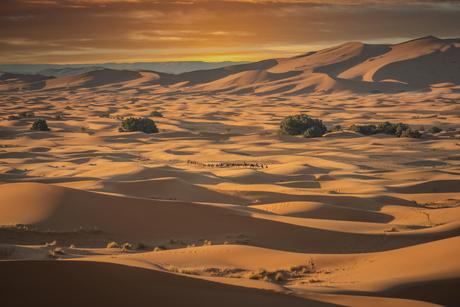 De kleuren van de woestijn