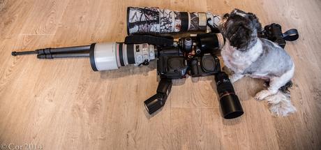 Canon wapen