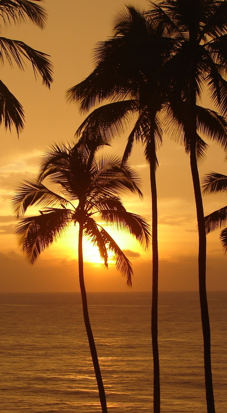 zonsondergang sri lanka