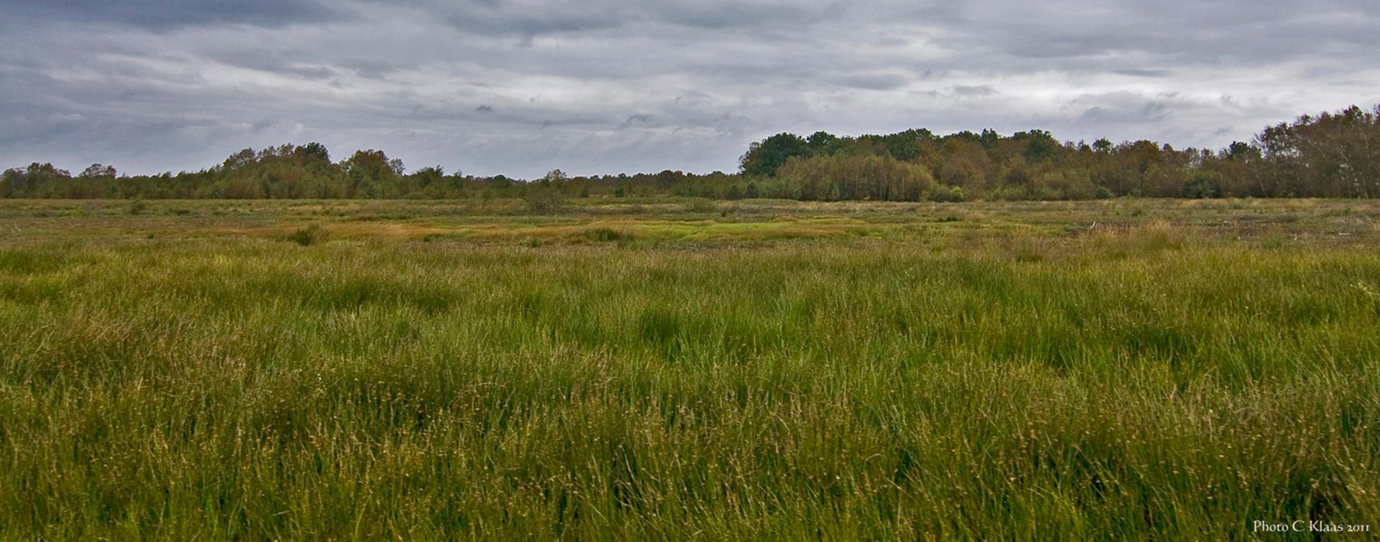 Veenlandschap-02 - Nog een veenlandschap genomen in het fraaie Drenthe. Bedankt voor de fijne reacties. - foto door k.tien op 08-10-2011 - deze foto bevat: veenlandschap