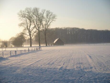 winterfoto dec.2010