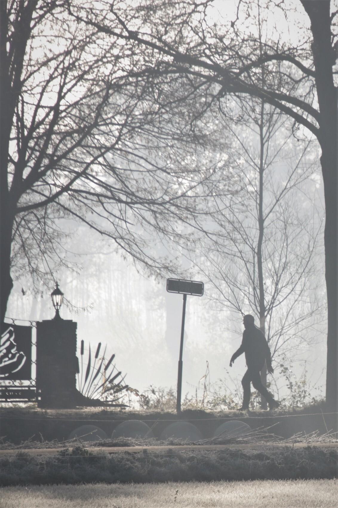 wandelaar in de mist - wandelaar in de mist op een vroege morgen in november 30-11-2019 - foto door mieke58 op 03-12-2019 - deze foto bevat: natuur, licht, herfst, landschap, mist, bos, tegenlicht, zonsopkomst, bomen, wandelaar