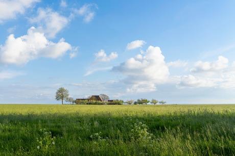 Boerderij langs het Ijselmeer - Friesland - Mirns