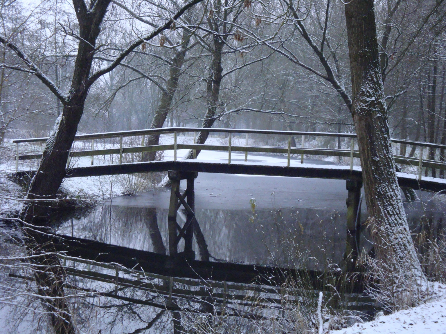 silence - winterse stilte - foto door TMQ op 14-04-2021 - locatie: Karbogerd 4283, 4283 Giessen, Nederland - deze foto bevat: winter, stilte, water, fabriek, boom, sneeuw, hout, natuurlijk landschap, takje, waterloop, atmosferisch fenomeen, bank