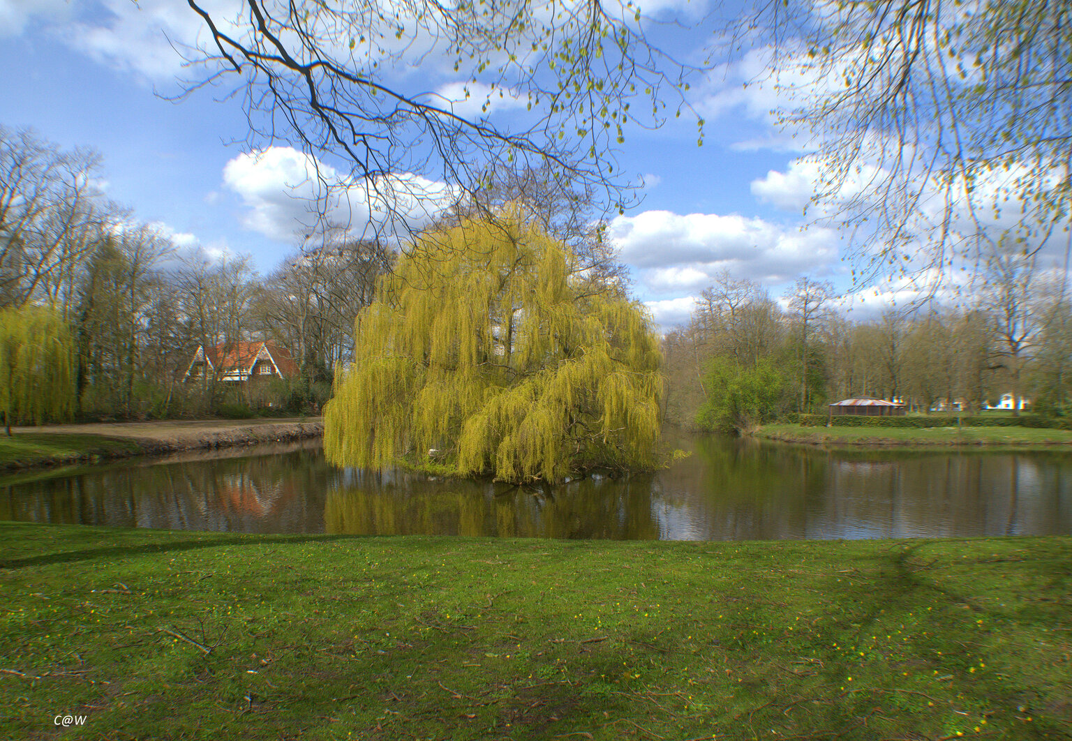 Het eilandje aan de zijkant gemaakt - Deze foto is gemaakt met een Groothoek lens.. - foto door Scooterlady op 15-04-2021 - deze foto bevat: water, eilandje, gras, bosje, wolk, water, fabriek, lucht, afdeling, natuurlijk landschap, meer, boom, lacustrine vlakte, bank