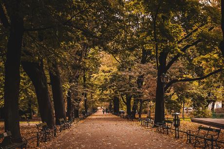 Herfst in Polen