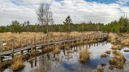 Plankenpad - Plankenpad in Dwingelderveld  - foto door ErikEsterFotografie op 08-04-2021 - deze foto bevat: wolk, lucht, water, fabriek, plant gemeenschap, ecoregio, natuurlijk landschap, natuurlijke omgeving, boom, hout