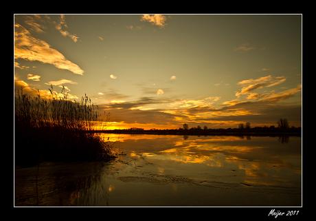 Lauwersmeer 1