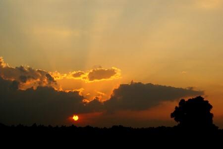 Zonsondergang Biesbosch - bedankt voor de fijne reacties. Hartelijk dank allemaal! - foto door Jan_koppelaar op 21-07-2007 - deze foto bevat: zon, landschap, zonnestralen, biesbosch, zonneschijn, jan