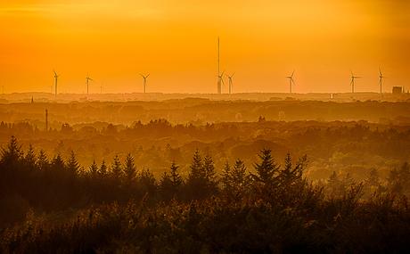Utrechts landschap bij onsondergang