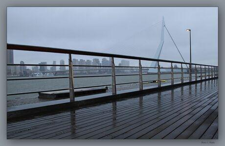 Praktijkdag Rotterdam