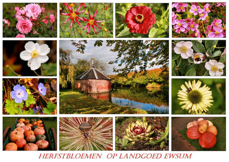 Herfst op landgoed Ewsum
