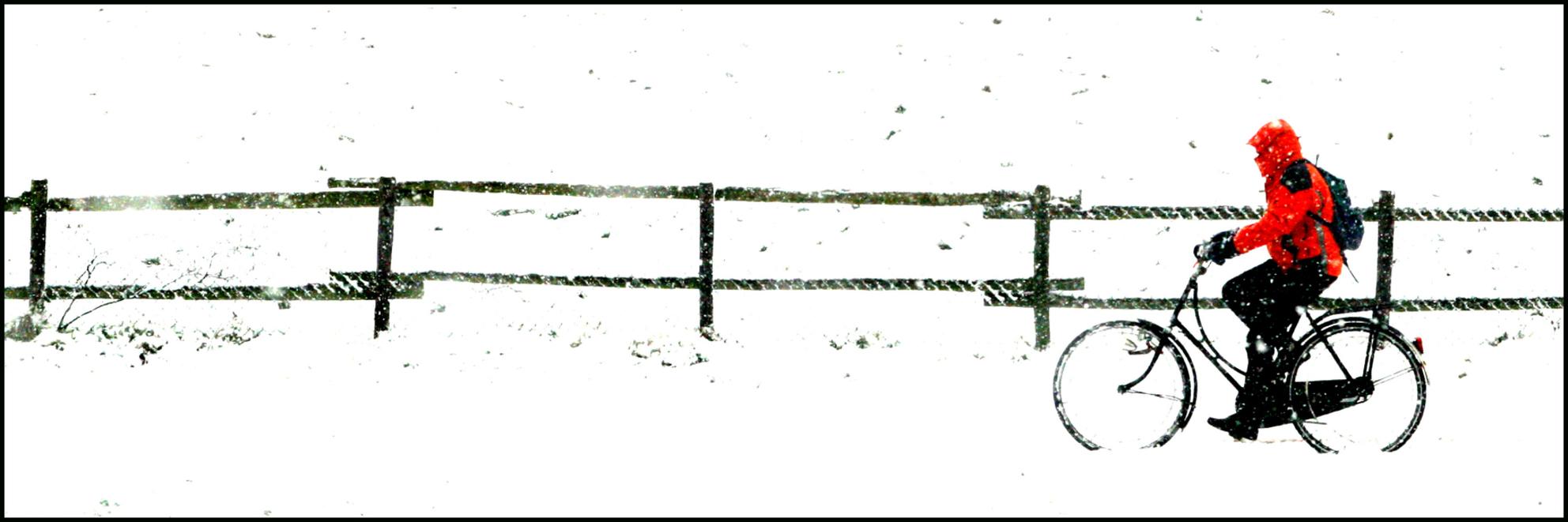 de eenzame fietser - vergroting van:  http://gallery.zoom.nl/foto/425215/de-eenzame-fietser.html - foto door fotovrij.nl op 01-11-2008 - deze foto bevat: kleur, wit, hek, panorama, sneeuw, winter, fiets, silhouet, fietser, fel, fietsen, kou, contrast, weiland, winterlandschap, winterjas - Deze foto mag gebruikt worden in een Zoom.nl publicatie