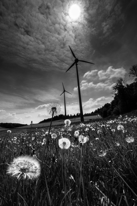 Windmolen Duitsland (Veserde)