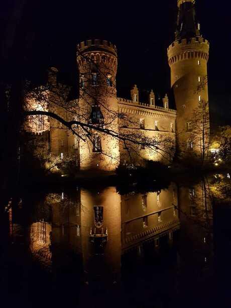 Schloss Moyland 2018